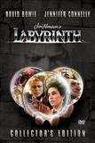die_reise_ins_labyrinth_front_cover.jpg